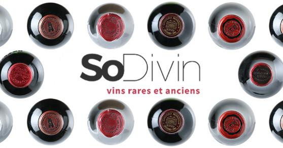 (c) Sodivin.fr